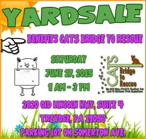 Yard Sale June27