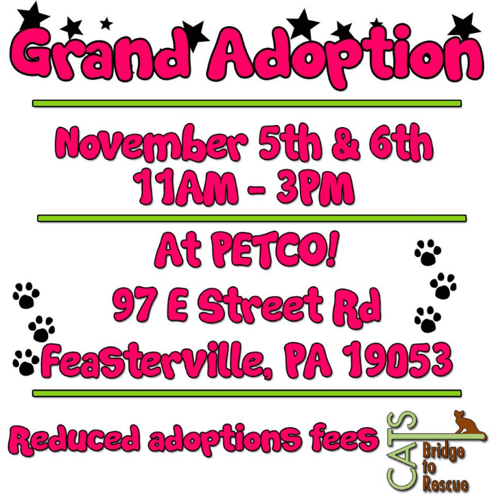 CBTR's Grand Adoption Day @ Petco