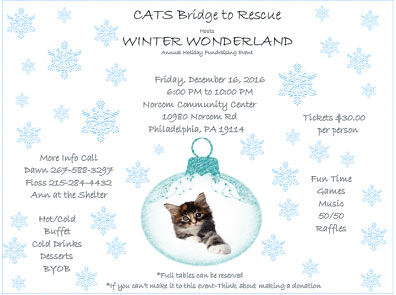 CBTR Winter Wonderland 2016-Annual Holiday Event