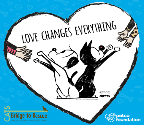 Petco Event Love Changes Everything